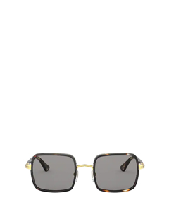 Po2475s Gold & Striped Browne & Smoke Solglasögon