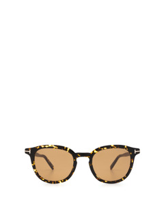 Ft0816 Dark Havana Solglasögon