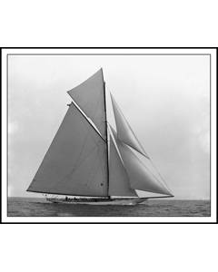Yacht Constitution Sloop 1901 Americas Cup Race