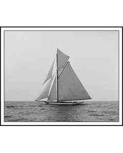 Yacht Constitution