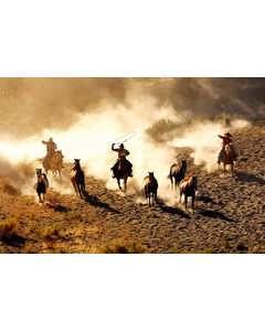 Cowboys Fångar Hästar