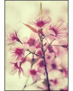 Vintage Retro Flower