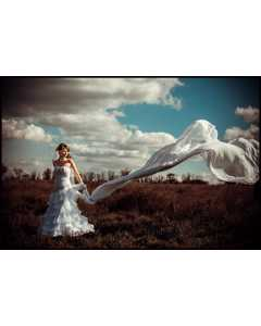 Bride On A Windy Day