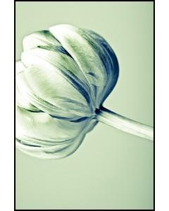 Retro Vintage Flower