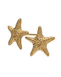 Starfish Oorbellen Goud