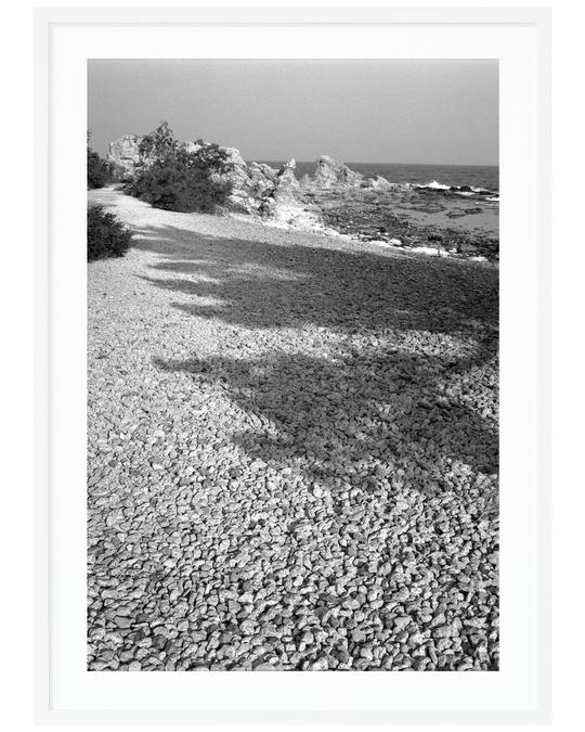 Poppy Posters Rock Tree 30x40