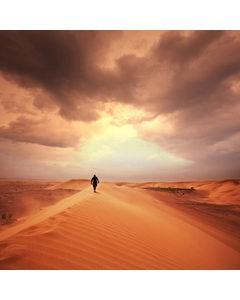 Hiker In The Desert