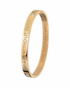 Guess Stalen Armband Bangle Goldplated Dream