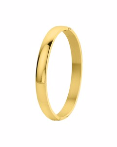 Stalen Armband Bangle Goldplated 8mm