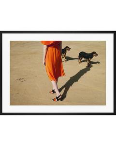 Poster Hundespaziergang