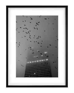 Poster Schwarzweiß Wolkenkratzer