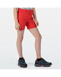 Regatta Kinderen/kinderen Highton Shorts