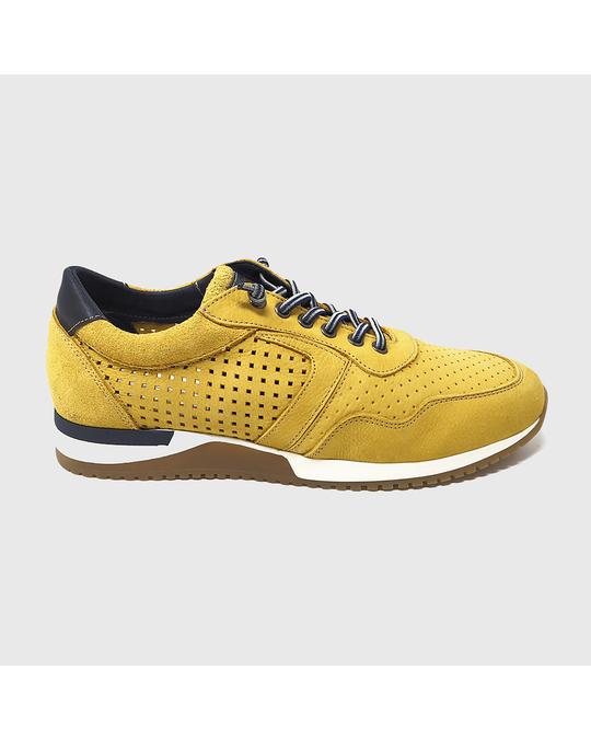 Hanks Iguain Sneakers Yellow