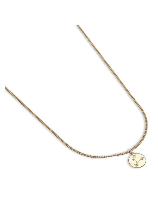 pfgSTOCKHOLM Zodiac Glam Necklace -capricorn