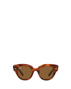 Rb2192 Striped Havana Zonnenbrillen
