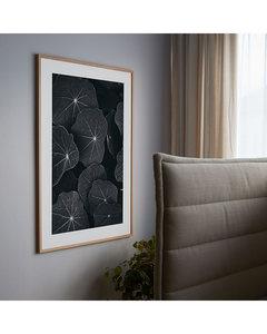 Poster Schwarzweiß Große Blätter
