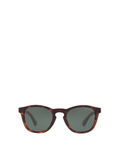 AR8112 red havana Sonnenbrillen