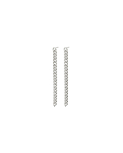 Lourdes Chain Earrings Steel