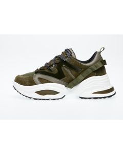 Fay Sneaker  Olive Multi