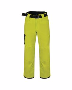 Dare 2b Mens Absolute Ski Pants