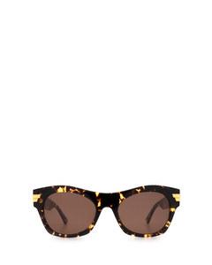BV1103S havana Sonnenbrillen