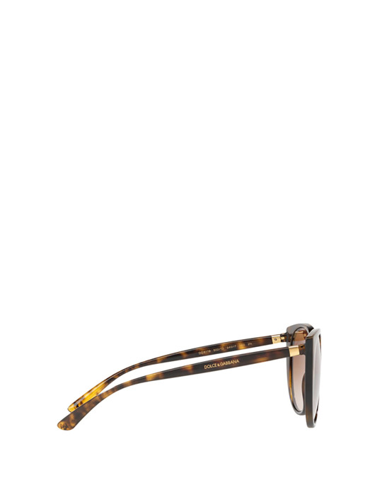 Dolce & Gabbana Dg6119 Havana Sunglasses