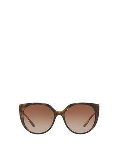 DG6119 havana Sonnenbrillen