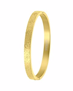 Guess Stalen Goldplated Bangle Armband 4g Logo