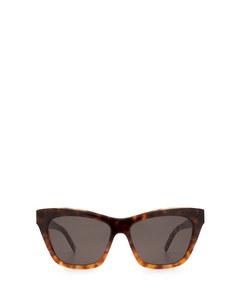 Sl M79 Havana Solglasögon