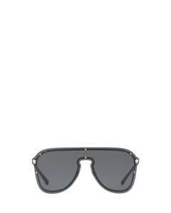 Ve2180 Silver Zonnenbrillen