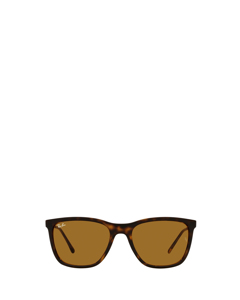 RB4344 havana Sonnenbrillen