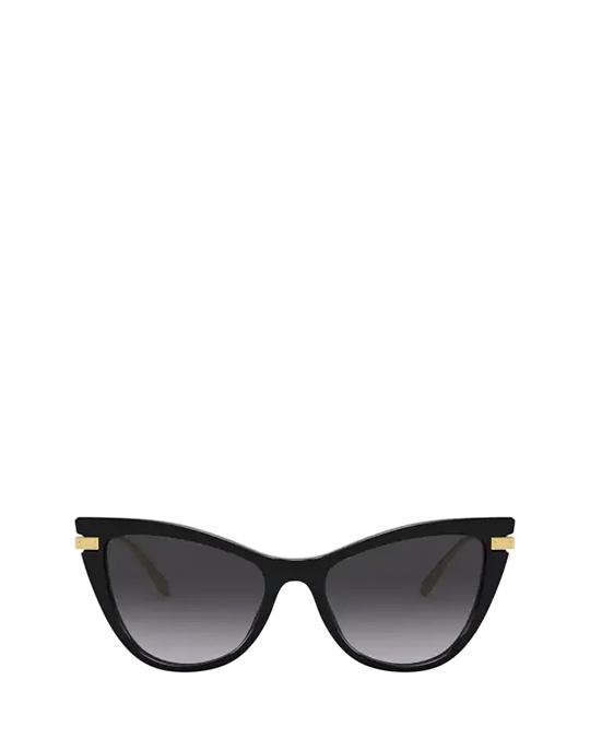Dolce & Gabbana Dg4381 Black Sunglasses