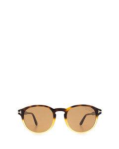 Ft0834 Havana Solglasögon