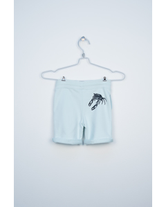 Shorts Mint Green