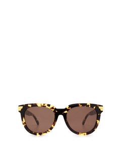 BV1104SA havana Sonnenbrillen