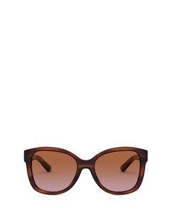 Rl8180 Shiny Striped Havana Solglasögon