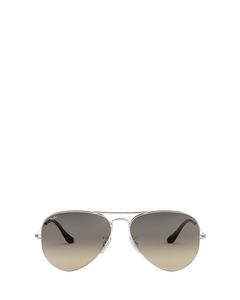 Rb3025 Silver Solglasögon
