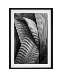 Poster Abstracte Palmboom