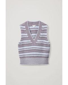 Striped V-neck Vest Purple / Blue