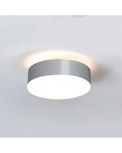 Reliëf Stalen Plafondlamp Met Opaal Glas Scherm