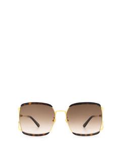 Gg0593sk Havana Solglasögon
