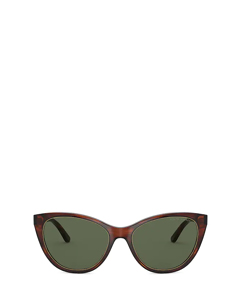 Rl8186 Shiny Striped Havana Solglasögon