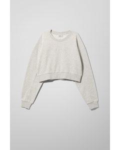 Nahtverziertes Sweatshirt Aldo Grau