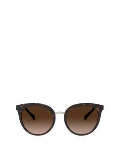 EA4145 shiny havana Sonnenbrillen