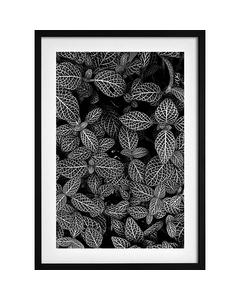 Abstrakte Pflanze