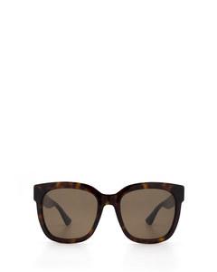 Gg0034s Havana Solglasögon