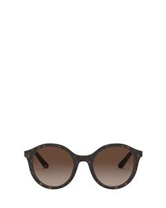 DG4358 havana Sonnenbrillen